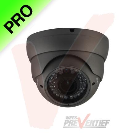 Pro Vandaalbestendige Bol Dome Camera Nachtzicht Zoomlens